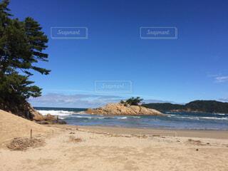 自然,風景,空,屋外,砂,ビーチ,雲,晴れ,晴天,水面,海岸,樹木