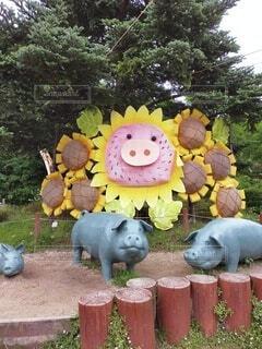 動物,屋外,ひまわり,草,向日葵,樹木,ブタ,豚,草木,グッズ,sunflower,漫画,ガーデン,pig,ピッグ,himawari
