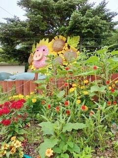花,屋外,ひまわり,草,向日葵,樹木,ブタ,豚,草木,sunflower,漫画,ガーデン,pig,ピッグ,himawari