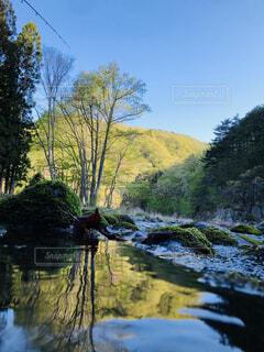 自然,風景,空,秋,屋外,湖,川,水面,山,樹木,草木