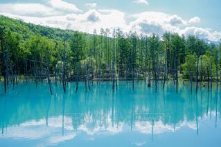 北海道の後世に残したい絶景の写真・画像素材[4622595]