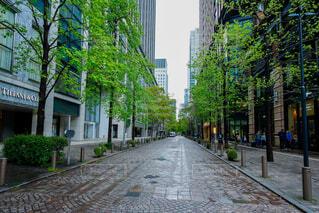 風景,空,建物,屋外,樹木,都会,道,高層ビル,歩道,地面,通り