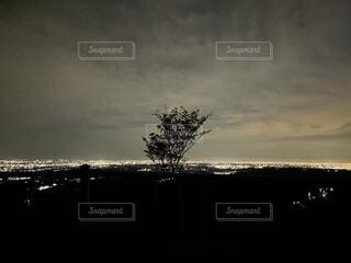 自然,風景,空,夜景,夜空,屋外,雲,綺麗,暗い,景色,丘,樹木,くもり