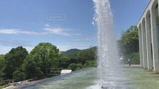 空,春,屋外,水面,景色,滝,樹木,噴水,バラ園,瀬戸内海,神戸,兵庫,須磨,須磨離宮公園,離宮公園