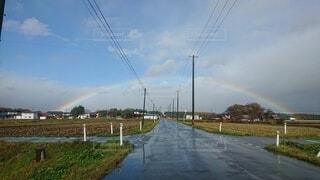 空,屋外,雲,虹,草,樹木,幸運,スピリチュアル