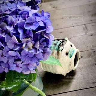 花,雨,あじさい,紫陽花,地面,梅雨,街中,草木,ファインダー越しの私の世界,キリトリセカイ