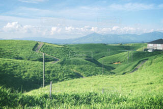 自然,風景,空,屋外,緑,草原,雲,山,景色,草,丘,樹木,道,草木
