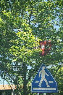 空,田舎,標識,散歩道