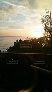 自然,空,屋外,湖,太陽,ビーチ,雲,夕暮れ,水面,樹木,日の出,サンセット