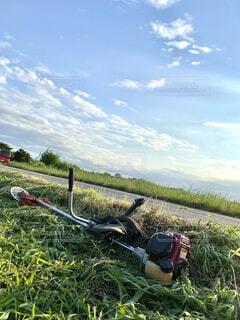 空,屋外,草,田んぼ,畑,草木,刈払い機