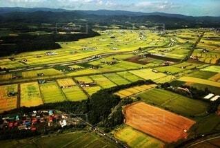 自然,風景,空,屋外,北海道,田舎,山,景色,田んぼ,田園,眺望,畑,空中,上空,環境,エコロジー