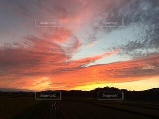 風景,空,屋外,太陽,雲,夕暮れ,樹木