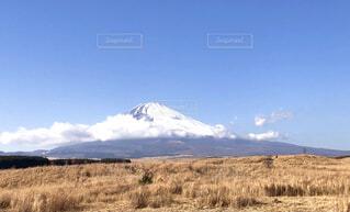 自然,風景,空,秋,富士山,雪,屋外,雲,青空,山,景色,草,大地