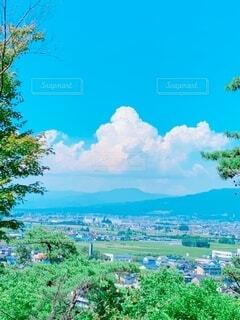 自然,風景,空,森林,屋外,雲,山,樹木,絵画,草木