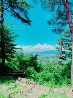 自然,風景,空,森林,屋外,雲,山,草,樹木,新緑,草木