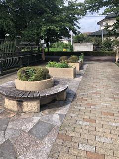 公園,観葉植物,草木,ガーデン