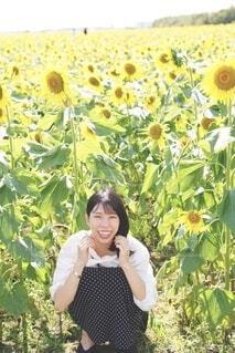 ひまわりと笑顔の写真・画像素材[4830388]