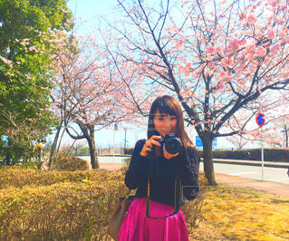 春 - No.402445