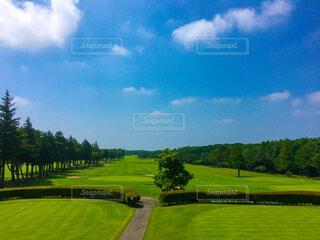 自然,風景,空,屋外,緑,雲,晴天,草,樹木,ゴルフ,那須