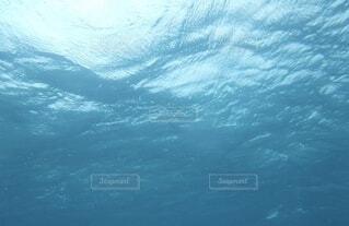 海の中に潜って海面を見上げた時の水面の様子の写真・画像素材[4641074]