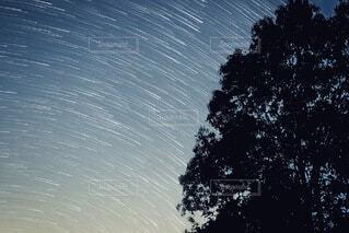 自然,空,夜景,屋外,星空,流れ星,樹木,タイムラプス