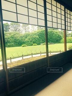 建物,庭,緑,窓,樹木,癒し,和室,畳,のんびり,昔,障子,草木