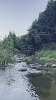 自然,風景,空,絶景,屋外,湖,森,綺麗,川,水面,山,樹木,水中,草木,水流,汚い,意外,濁り,騙された