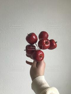 食べ物,屋内,海外,果物,壁,写真,思い出,リンゴ