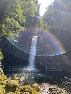自然,屋外,虹,水面,滝,樹木,太陽の恵み