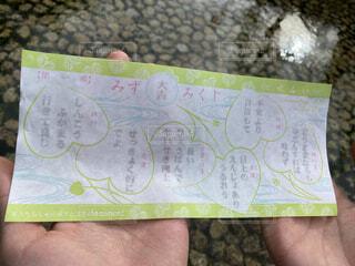 上賀茂神社のみずみくじの写真・画像素材[4641553]