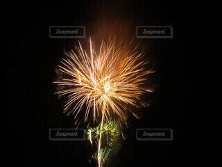 夜空の花火の写真・画像素材[4659973]