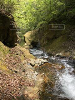 自然あふれる滝です!の写真・画像素材[4642353]
