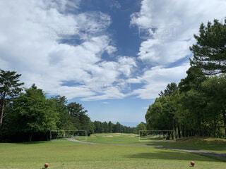 自然,風景,空,公園,スポーツ,屋外,雲,景色,草,樹木,ゴルフ,アスレチック,日中