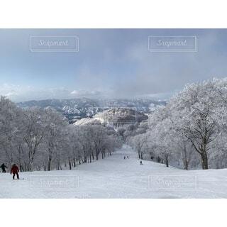 野沢温泉スキー場で貸し切りパウダースノーの写真・画像素材[4642458]