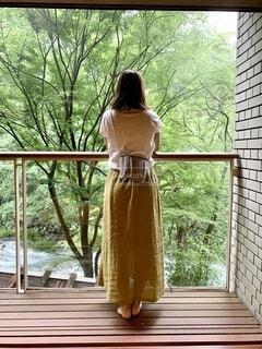 憧れの旅館での写真・画像素材[4663918]