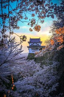 鶴山公園のマジックアワーの写真・画像素材[4645632]