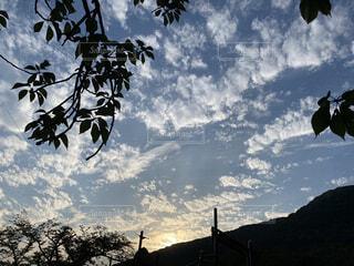 自然,空,公園,屋外,雲,夕焼け,葉,山,景色,夏雲