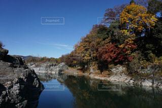 秋の長瀞川の写真・画像素材[2511319]