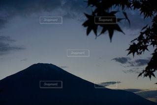 富士山ともみじの写真・画像素材[2511326]