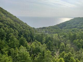 風景,海,空,森林,木,屋外,緑,雲,山