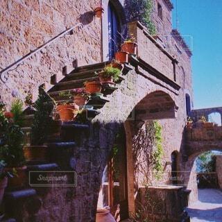 花,屋外,階段,観光,家,旅行,石,草木