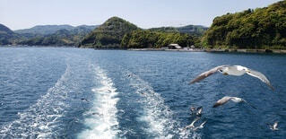 自然,屋外,湖,ビーチ,ボート,船,水面,山