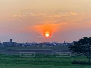 空,屋外,太陽,緑,雲,夕暮れ,草,樹木,日の出