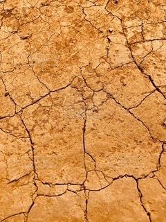 夏,暑い,河原,土,地面,茶,ひび,ひび割れ