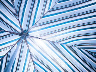 青い傘の写真・画像素材[4650973]