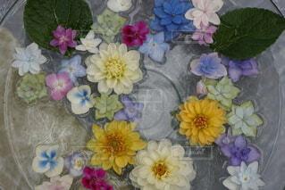 花,花束,水,ぬいぐるみ,草木,ブルーム,フローラ