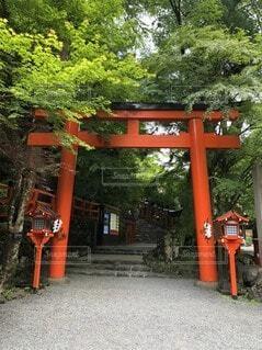貴船神社の写真・画像素材[4653692]