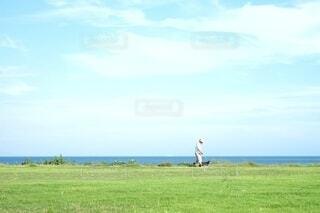 自然,風景,海,空,夏,屋外,雲,散歩,海岸,景色,草,ペット,シンプル
