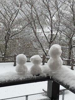 冬景色の写真・画像素材[4653405]