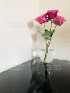 花,屋内,花束,花瓶,フラワー,バラ,ガラス,薔薇,植木鉢,壁,観葉植物,flower,草木